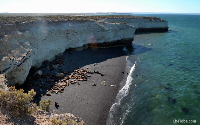 Lobería Punta Loma Puerto Madryn