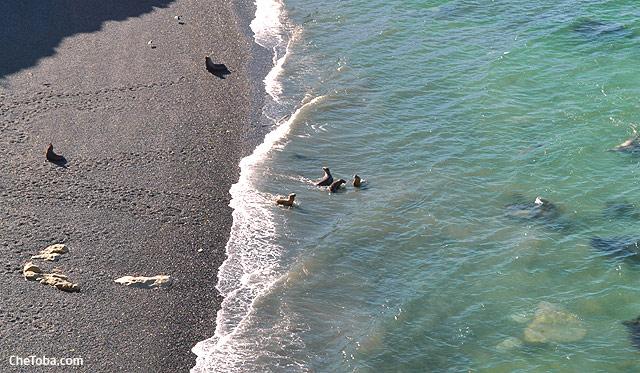 Reserva Punta Loma Puerto Madryn
