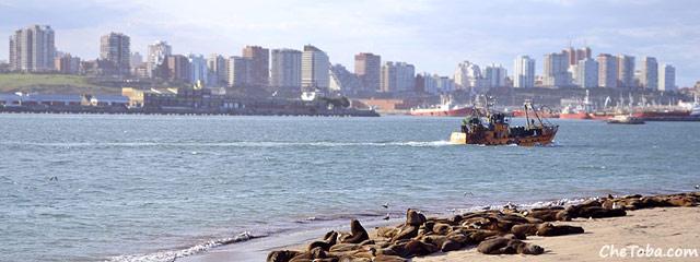 Postal de Mar del Plata