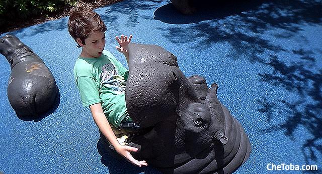 Toto y el hipopótamos