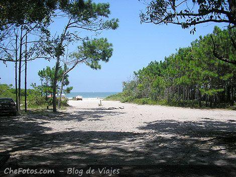 Playas del Centro y Norte de Florianópolis 4