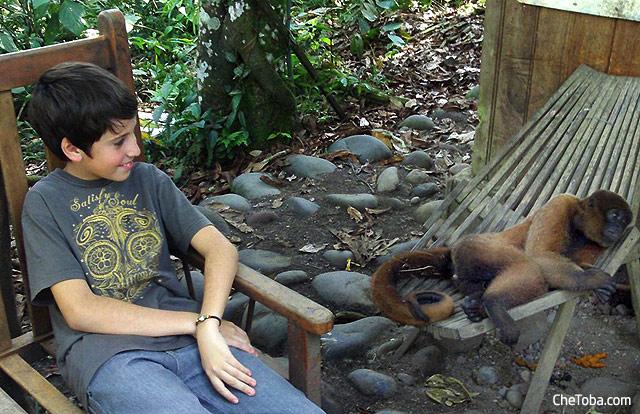 Reserva de los Monos Puyo