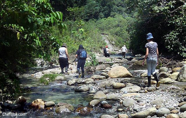 Excursión a Puyo Selva Ecuador