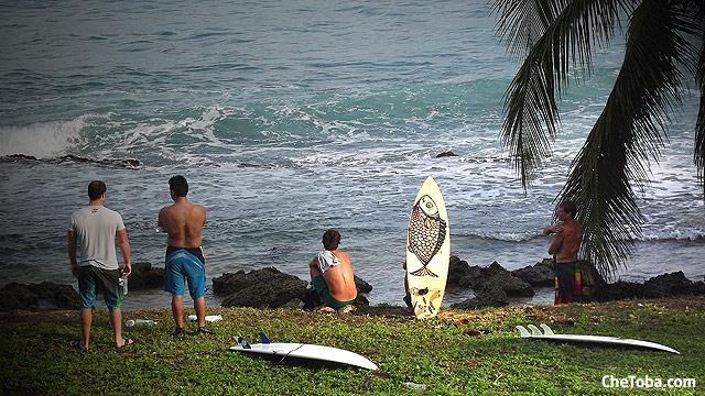 surf-surfer