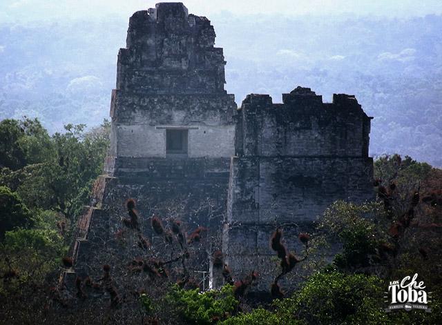 tikal-mundo-maya