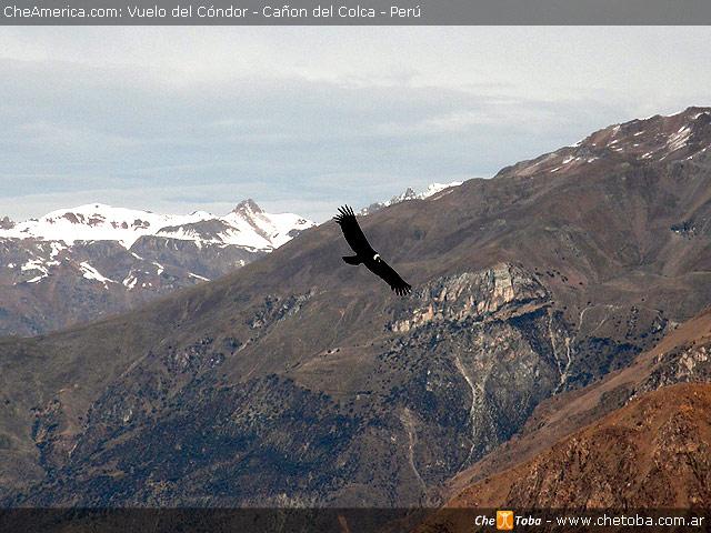Desde Arequipa al valle y cañón del Colca 2